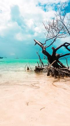 Belize 2019-51.jpg