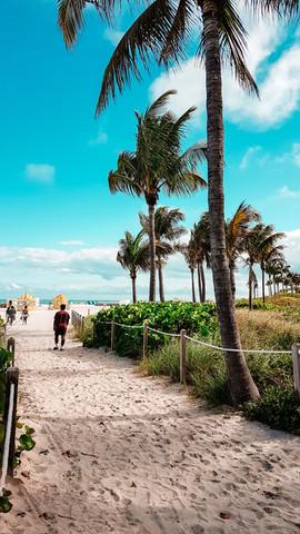 Miami 2019-13.jpg