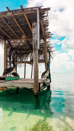 Belize 2019-58.jpg