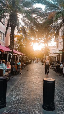 Miami 2019-36.jpg