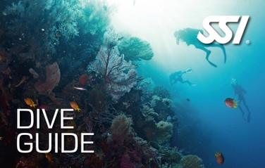 SSI Dive Guide