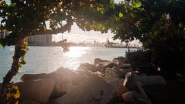 Miami 2019-26.jpg