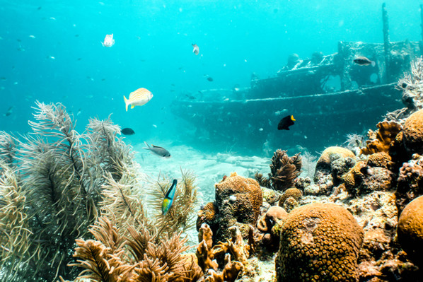 Curacao Diving Tugboat