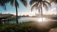 Miami 2019-33.jpg