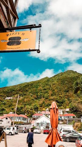 Saba 2019-4.jpg