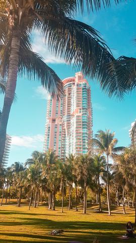 Miami 2019-30.jpg