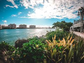 Miami 2019-41.jpg
