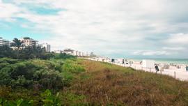 Miami 2019-21.jpg