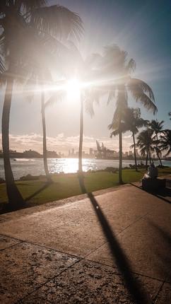 Miami 2019-31.jpg