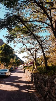 Saba 2019-25.jpg