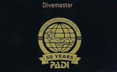 PADI Divemaster (with DSD-Leadership)