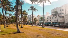 Miami 2019-17.jpg