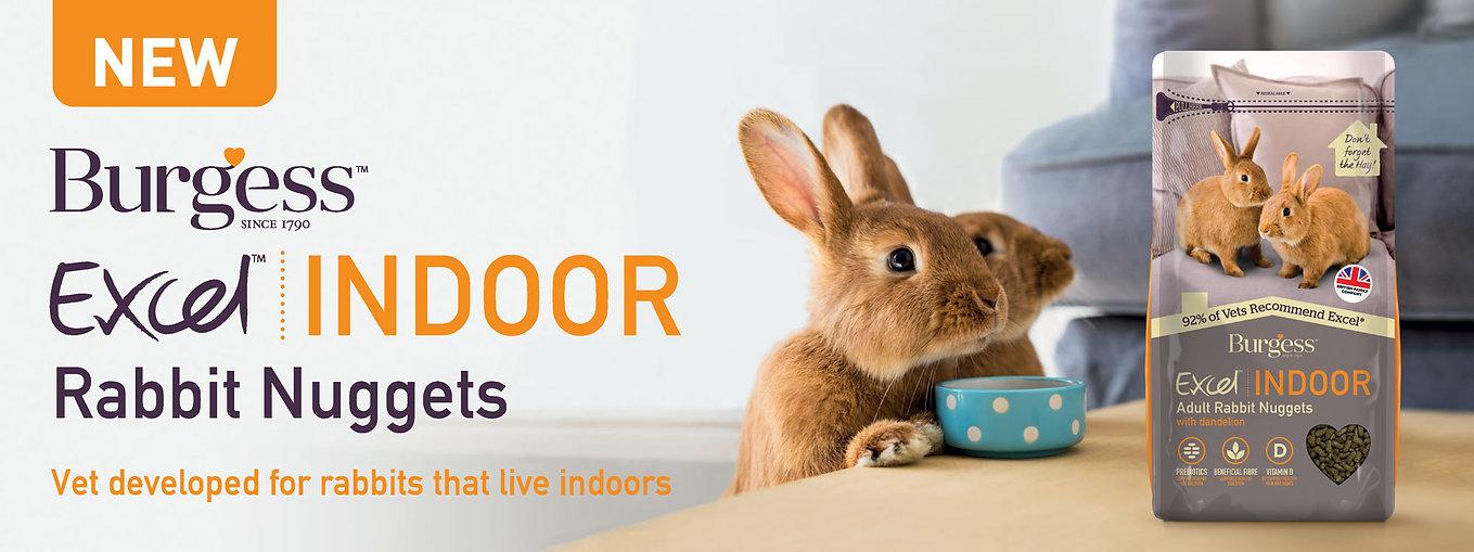 excel-indoor-rabbit-slider.jpg