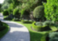xeriscaping LA is the process of using gardening & landscaping methods provides many advantages in Los Angeles