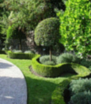 Trend Bahçe