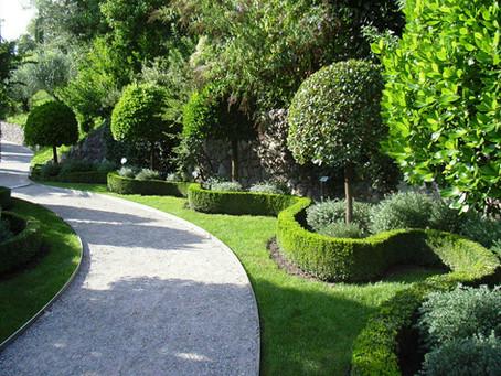 شركة تنظيف الحدائق وتنسيقها