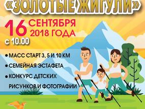 """Фестиваль """"ЗОЛОТЫЕ ЖИГУЛИ 2018"""" состоялся"""