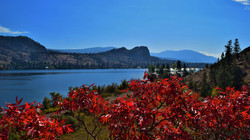 Red Leaf View