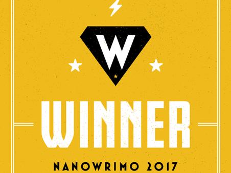 Post-NaNoWriMo: At NaNoWriMo's End