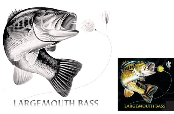 Large Mouth Bass Solar Active