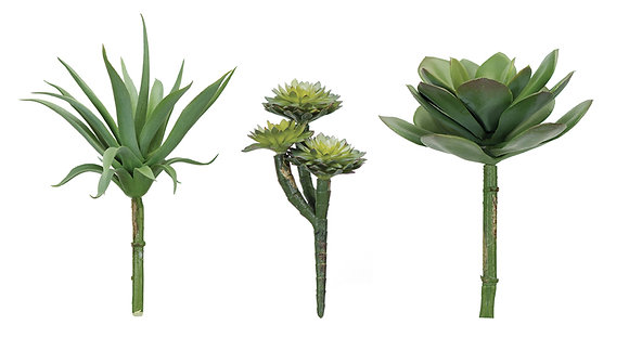 Set of 3 Assorted Succulent Stems