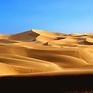 Desert Logo.png