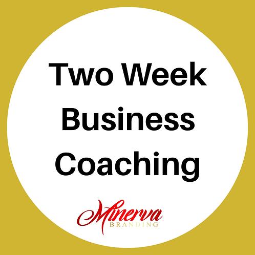Two Week Business Coaching