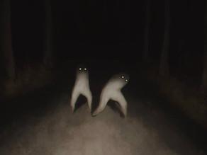 12. Fresno Night Crawlers