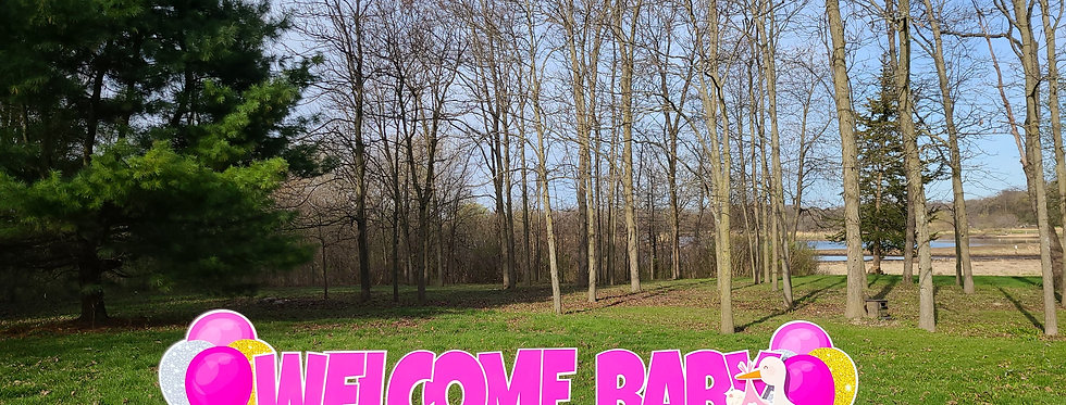 BABY - 1-DAY Lawn Party Rental