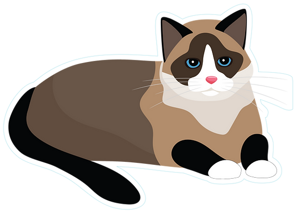 Cat_Laying