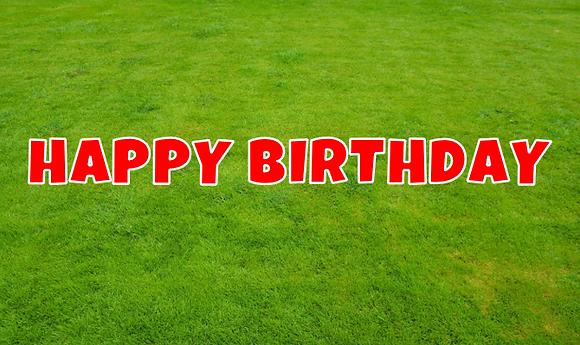 HAPPY BIRTHDAY Letter Set -Red
