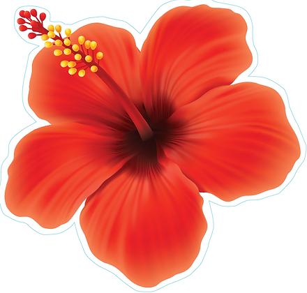 Hawaiian Flower_Red