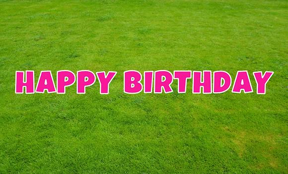 HAPPY BIRTHDAY Letter Set -Bright Pink
