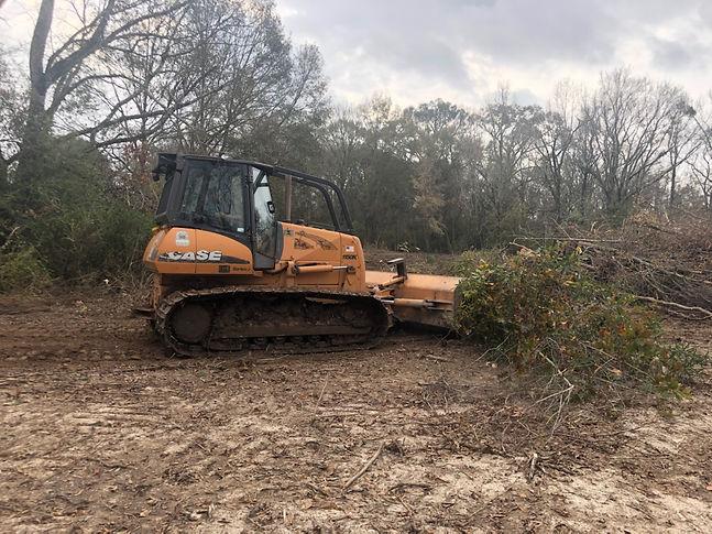 Bulldozer pushing tree debris