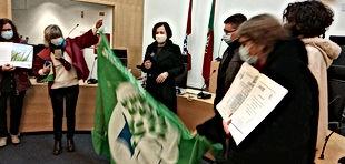 Bandeira Verde Eco-Escolas 1.jpg