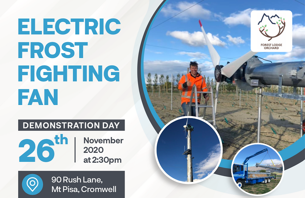 Electric Frost fighting Fan Demo Day invite