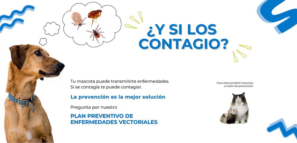 Prevención Enfermedades Vectoriales.png