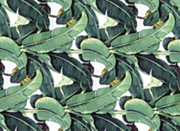 martinique-wallpaper-palm.jpeg