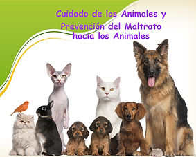 Cuidado de Animales.jpg
