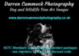 Photography ad.jpg