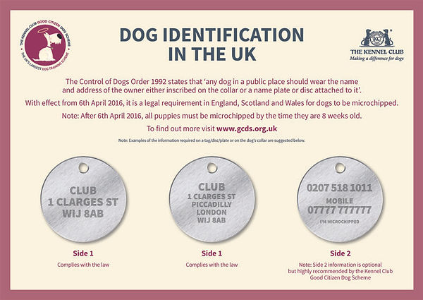 dog_identificationin_the_uk.jpg