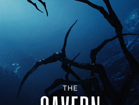 Review of THE CAVERN by Brian's Book Blog