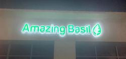 AMAZING BASIL