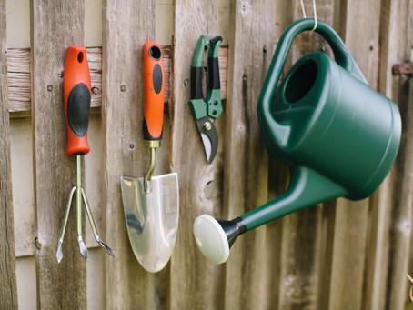 Top 5 gardening tools to borrow this season