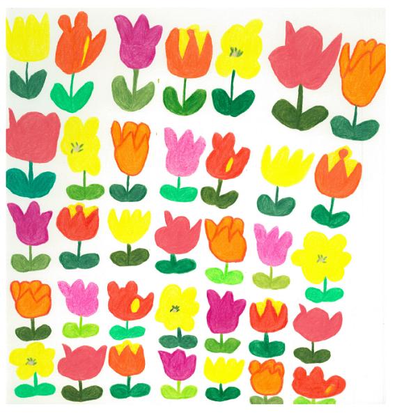 チューリップの色々  318×321 色鉛筆・紙