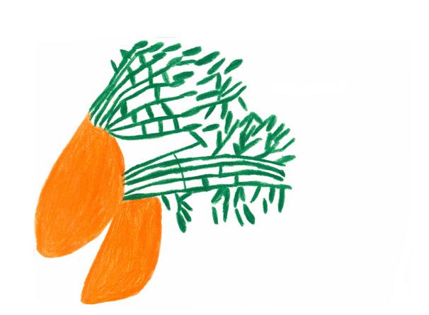 人参  148×210 色鉛筆・紙