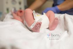 Michigan Birth Photographers-106