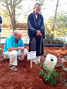 שתילת עץ קוזו בנווה שלום בנוכחות חברי טאו שיאצו ומייסדם אנדו ריוקיו