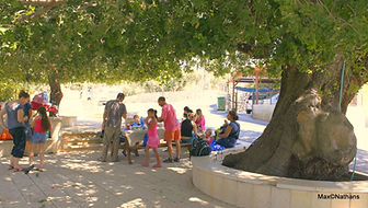 under the old oak in Jat haglilit