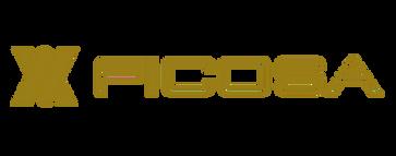 logo-ficosa 4.png